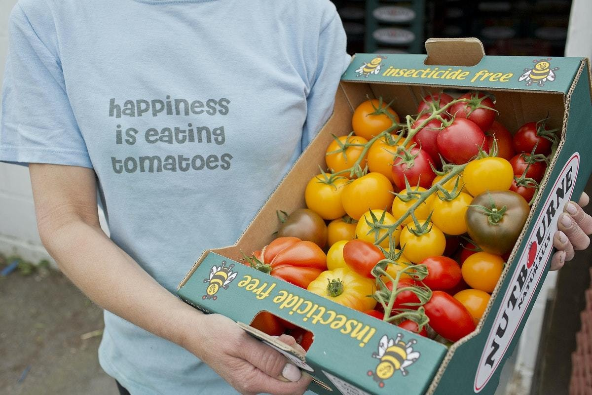 Happiness Is Eating Tomatoes