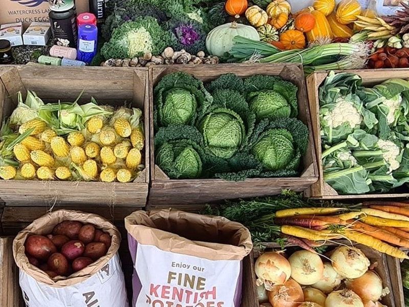 Day 13: British Food Fortnight – Celebrating Harvest Time with First Choice Produce.