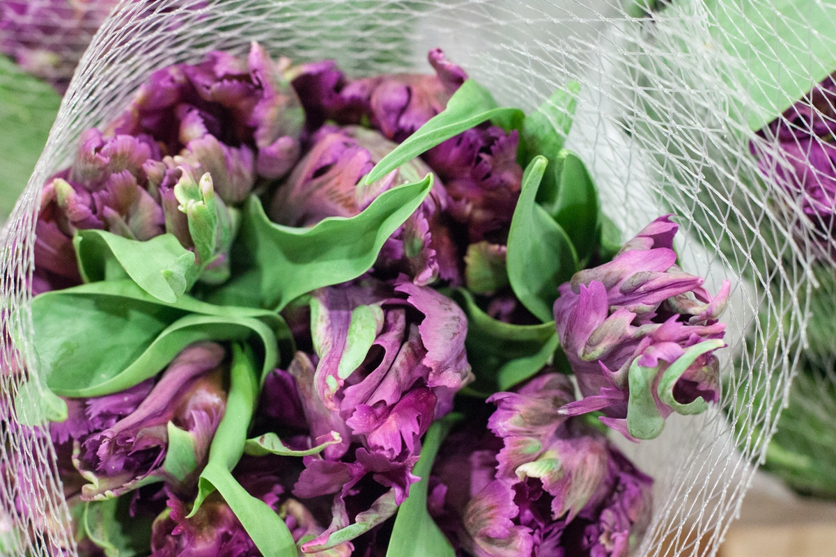New Covent Garden Flower Market April 2015 Market Report Flowerona 5 Hr