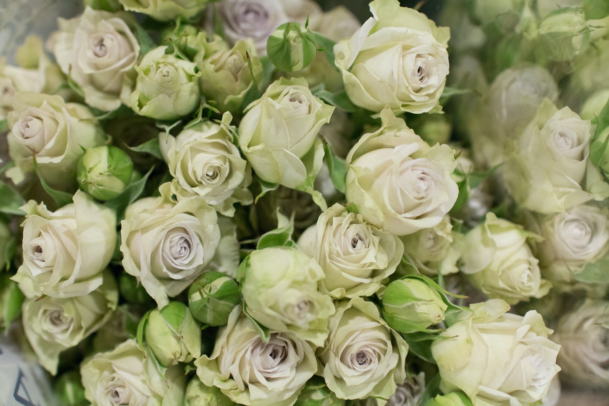 New Covent Garden Flower Market April 2016 Market Report Flowerona Hr 11