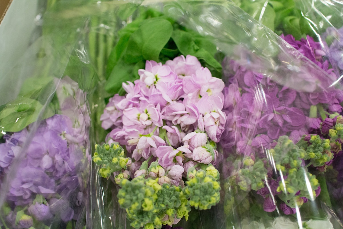 New Covent Garden Flower Market April 2016 Market Report Flowerona Hr 2