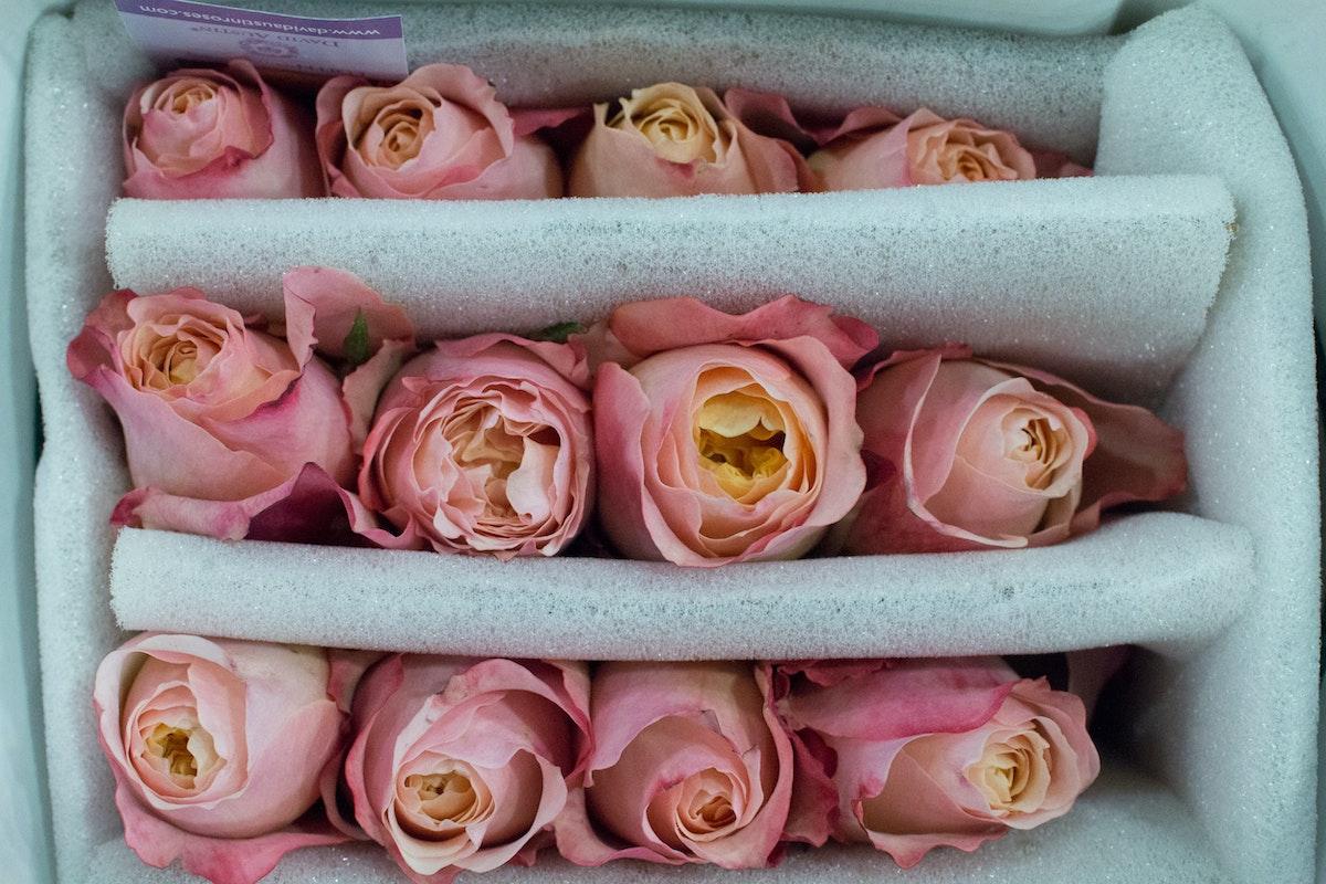 New Covent Garden Flower Market Januaryôçö2016 Market Report Flowerona Hr 11