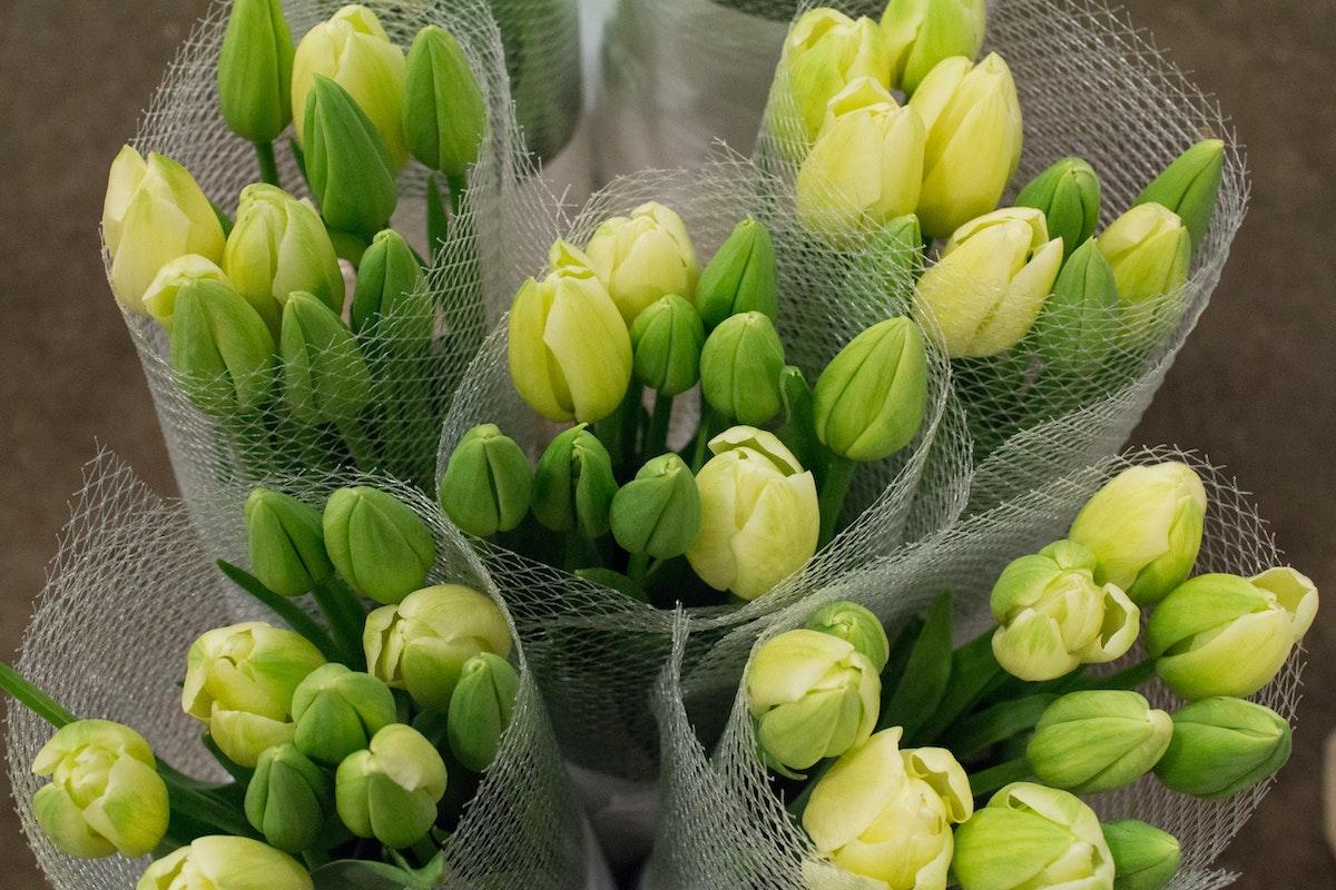 New Covent Garden Flower Market Januaryôçö2016 Market Report Flowerona Hr 5