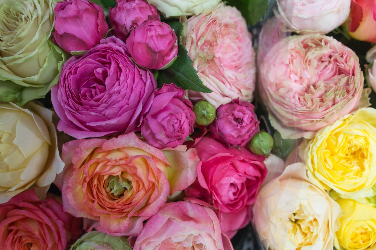 New Covent Garden Flower Market July 2017 Flower Market Report Rona Wheeldon Flowerona Mixed Garden Roses At Dennis Edwards Flowers