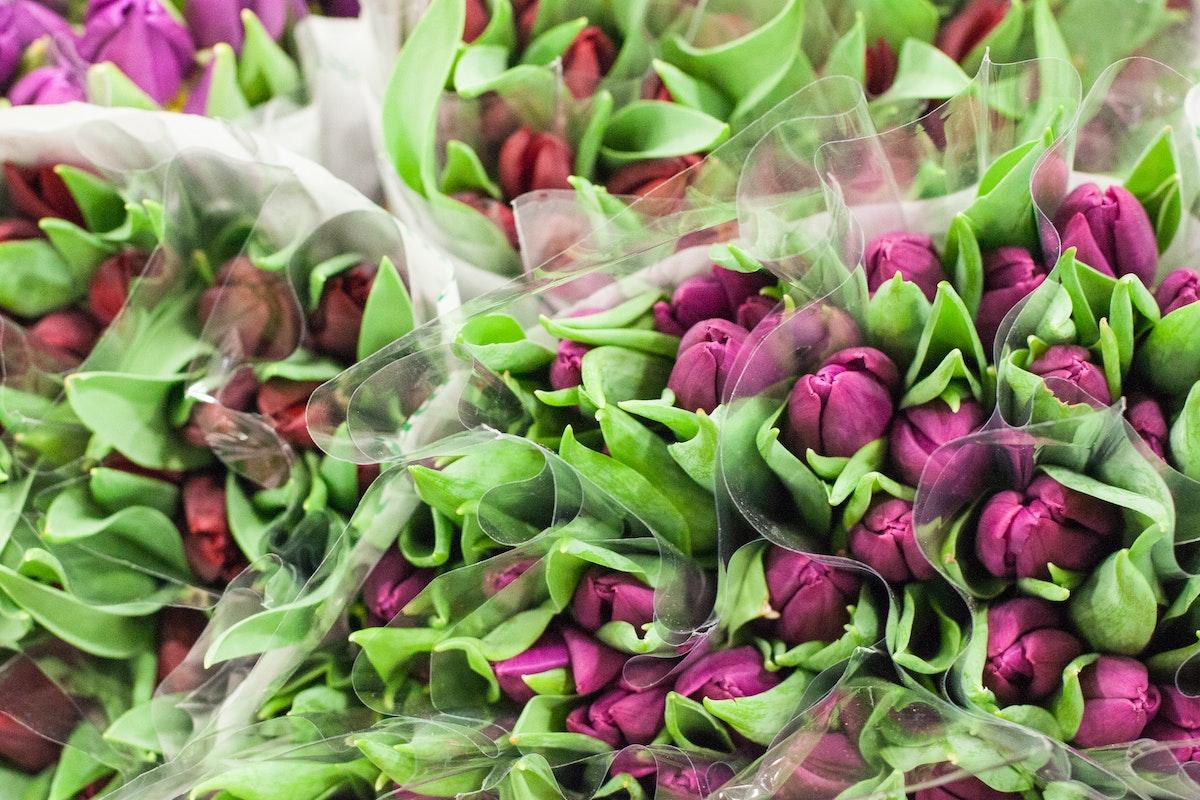New Covent Garden Flower Market March 2015 Market Report Flowerona 2