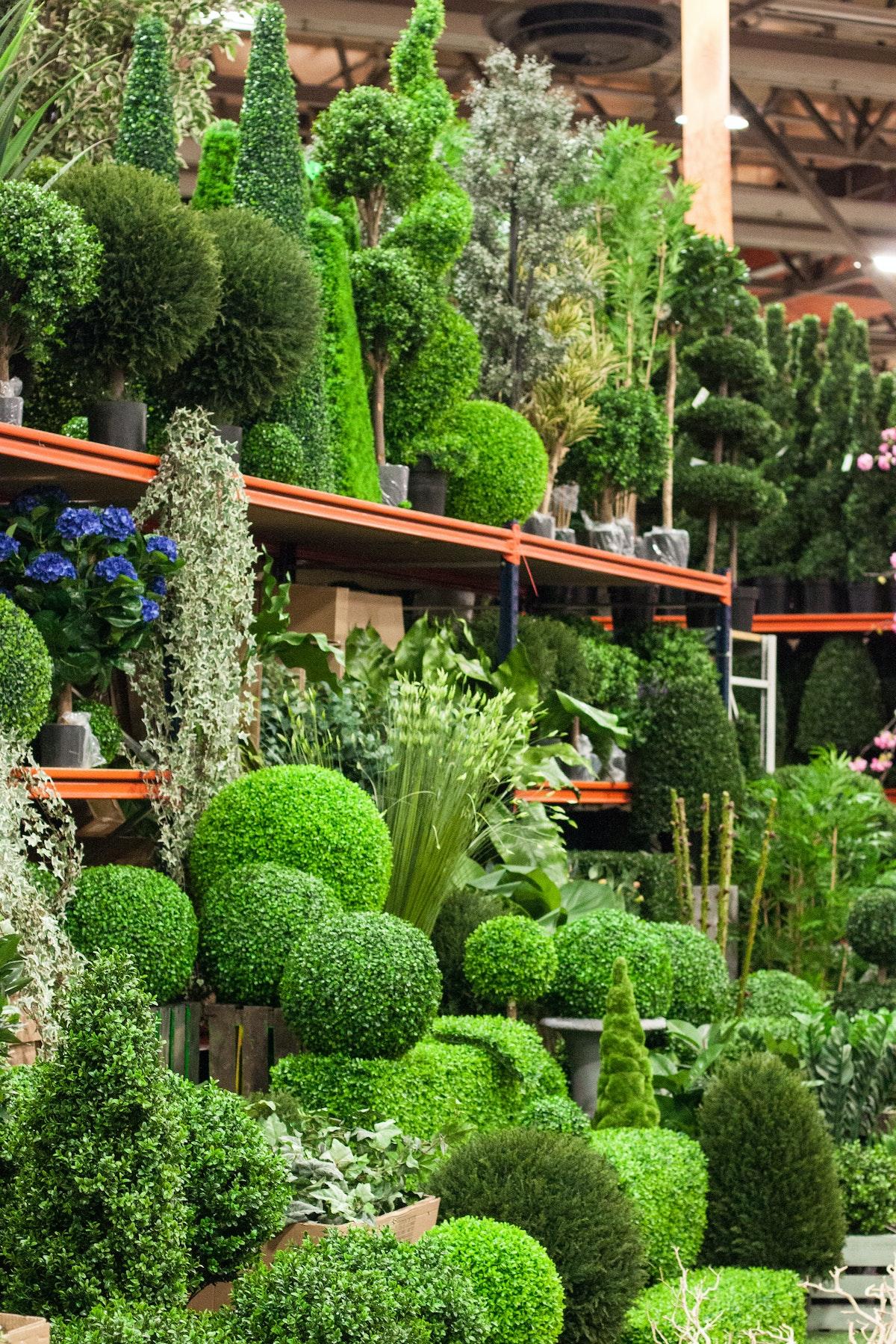 New Covent Garden Flower Market March 2015 Market Report Flowerona 34
