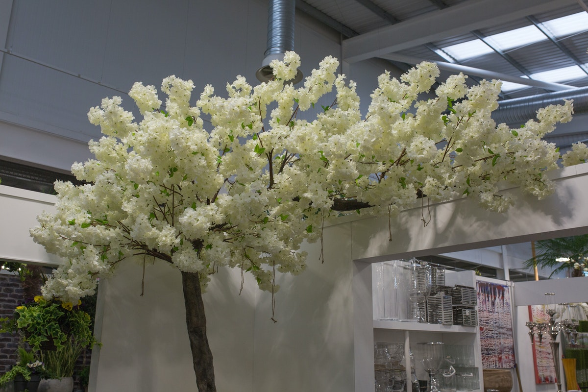 New Covent Garden Flower Market May 2017 Flower Market Report Rona Wheeldon Flowerona Blossom Tree At C Best