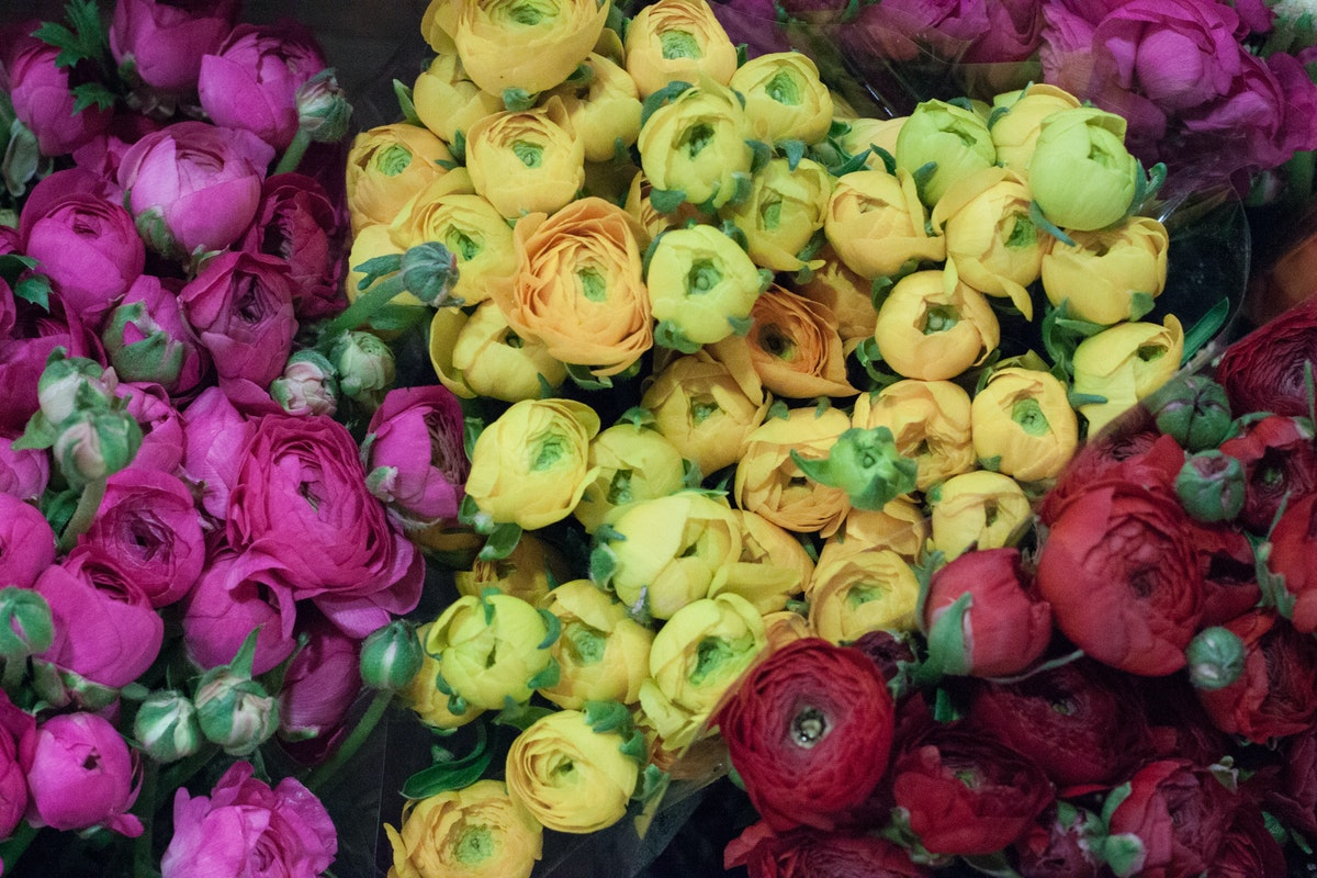 New Covent Garden Flower Market November 2015 Market Report Flowerona Hr 1
