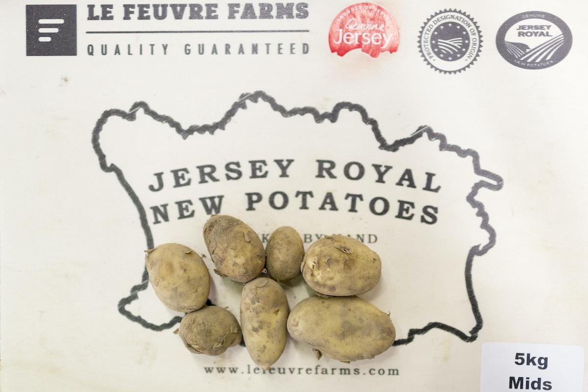 Fruit And Veg Market Report February 2017 Jersey Royal Potatoes