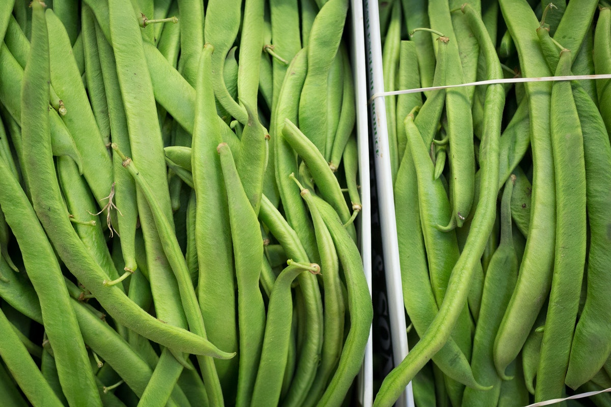 Fruit And Veg Market Report July 2017 Runner Beans
