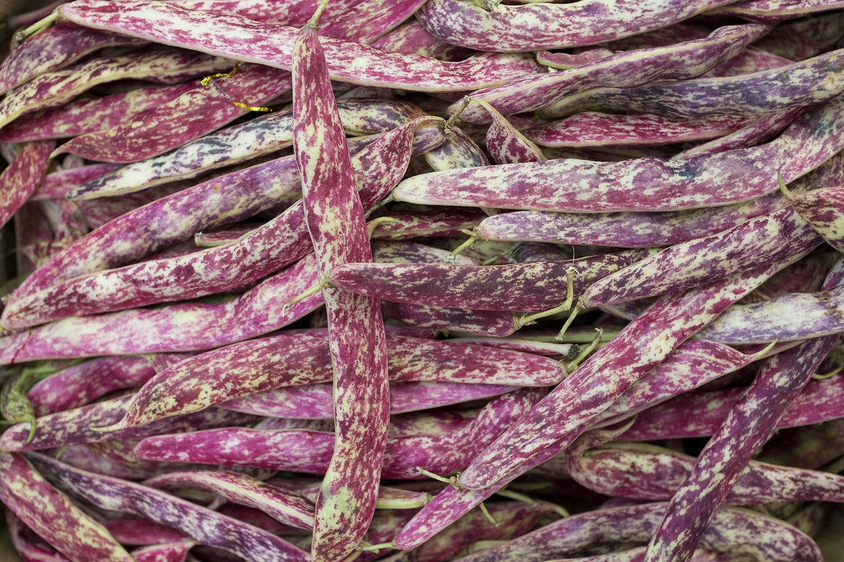 Fruit And Veg Market Report May 2017 Borlotti