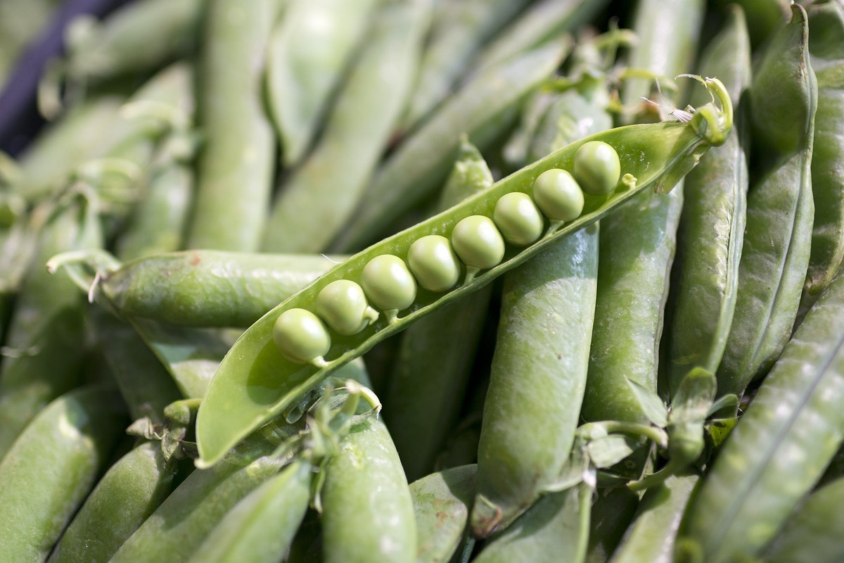 Fruit And Veg Market Report May 2017 Peas