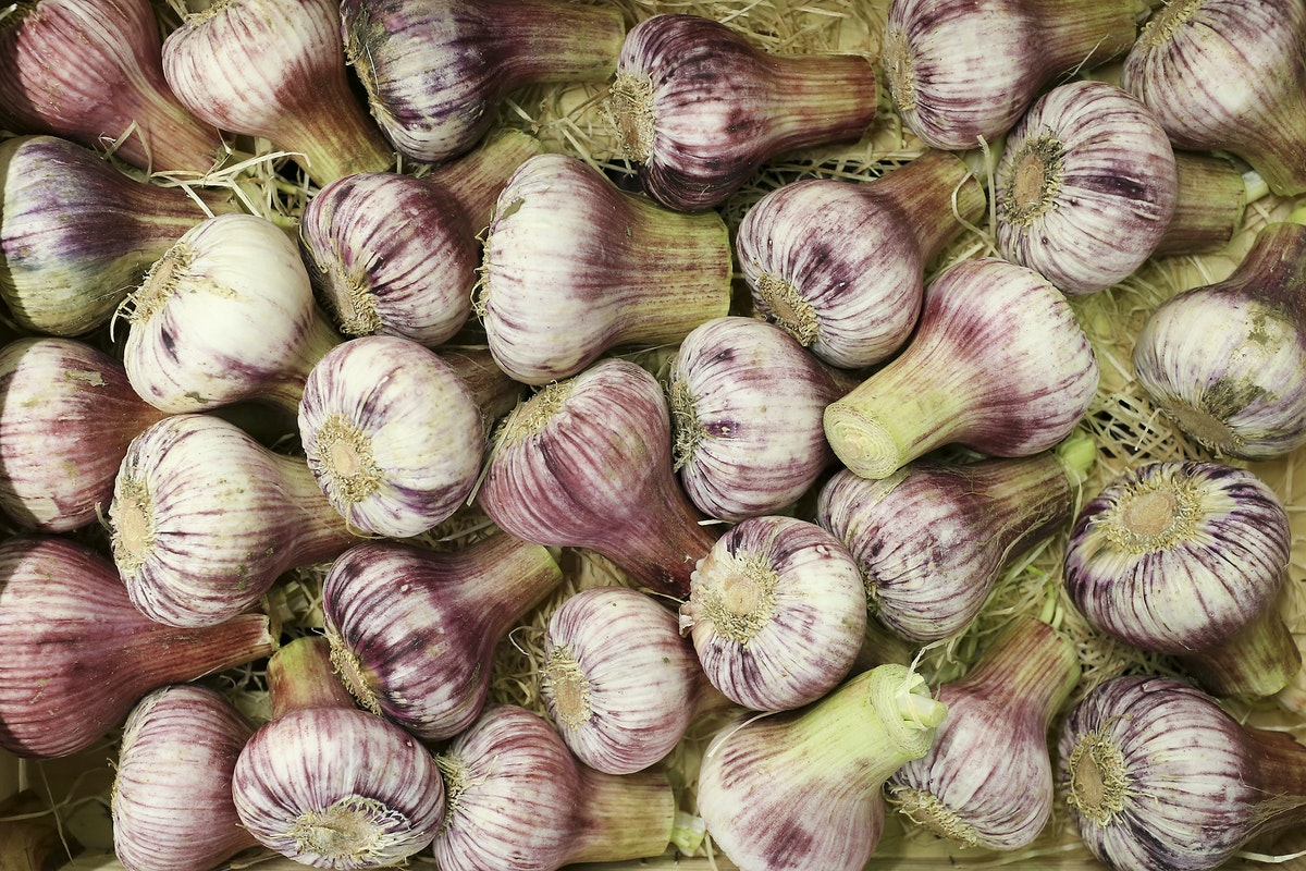 Fruit And Veg Market Report May 2017 Rose Garlic