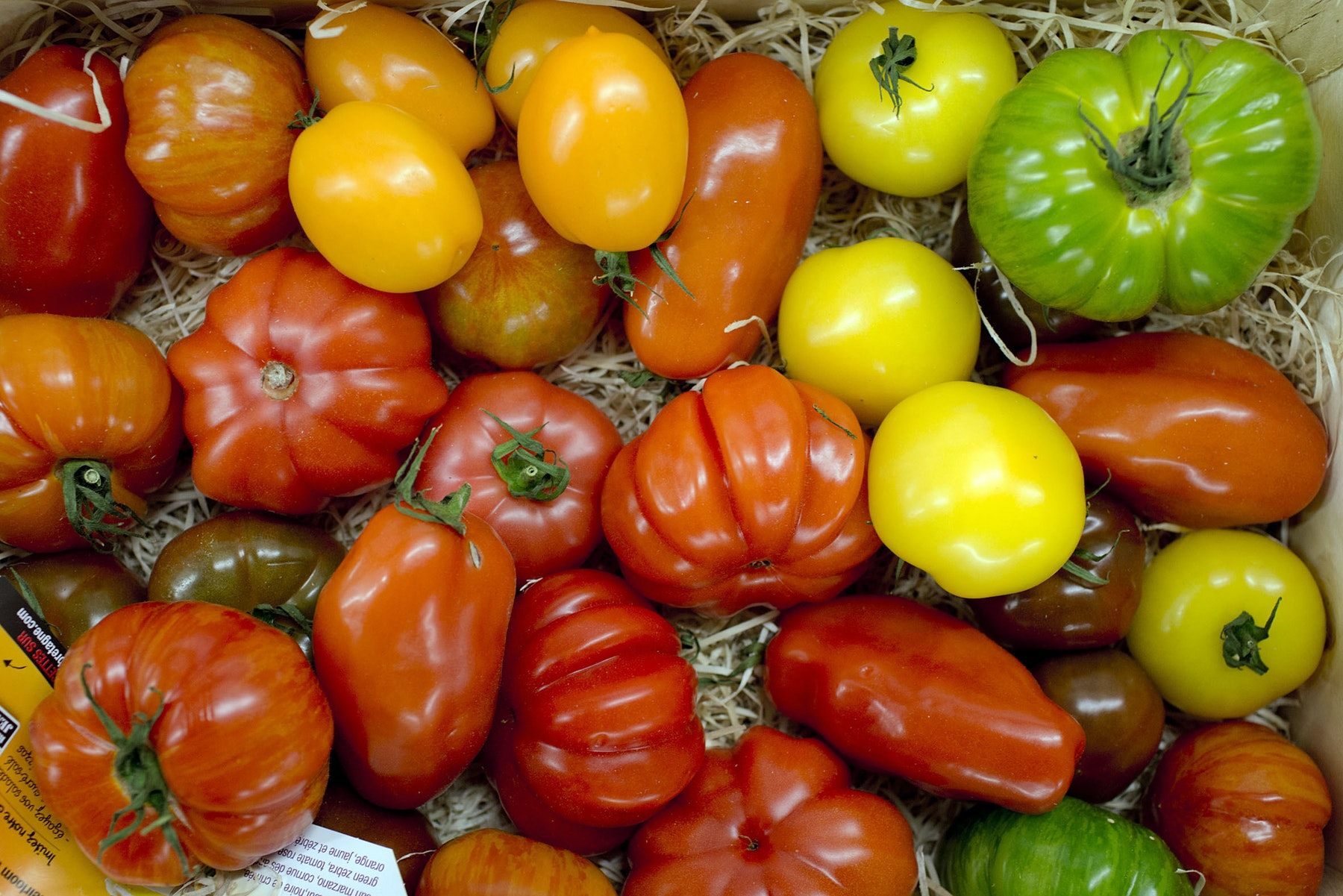 Fruit And Vegetable Market Report April 2014 Tomatoes