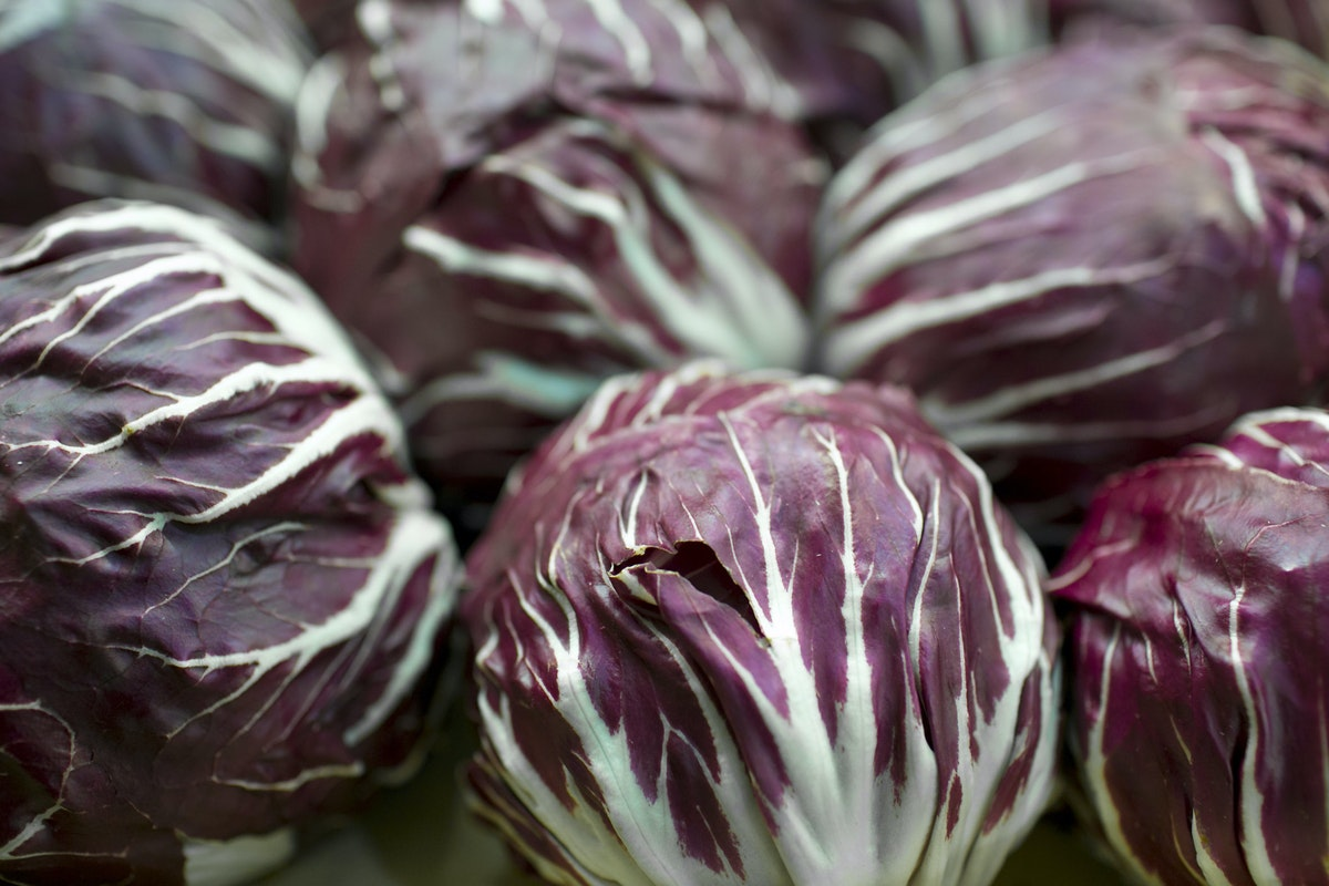 Fruit And Vegetable Market Report April 2015 Radicchio