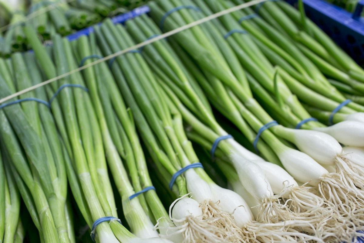 Fruit And Vegetable Market Report August 2015 Spring Onions