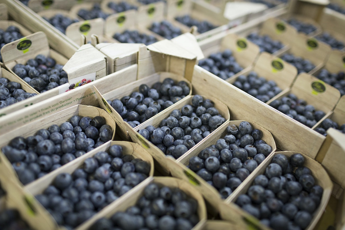 Fruit And Vegetable Market Report August 2016 Blueberries