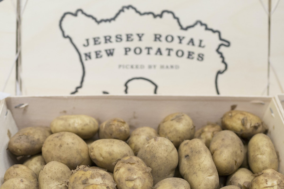 Fruit And Vegetable Market Report August 2016 Jersey Royals