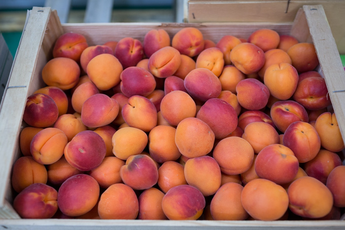 Fruit And Vegetable Market Report August 2017 Blush Apricots