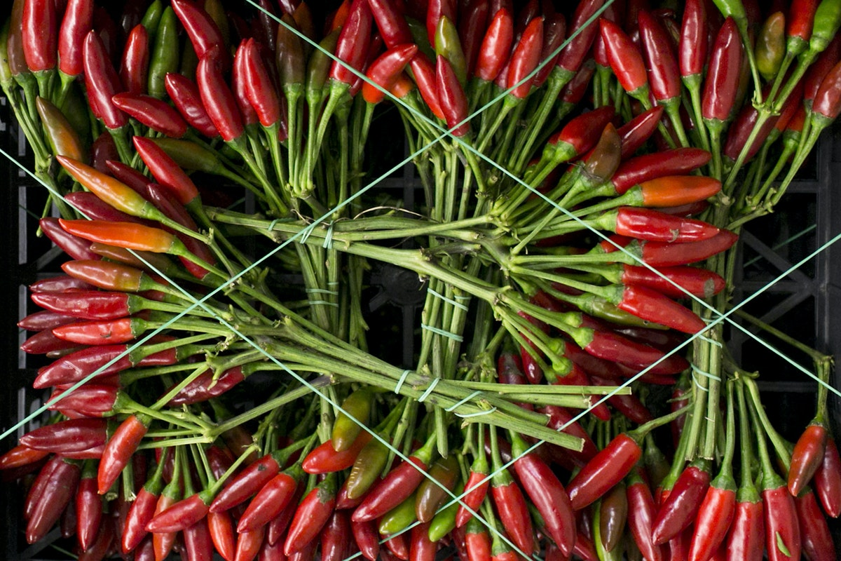 Fruit And Vegetable Market Report December 2014 Chillies