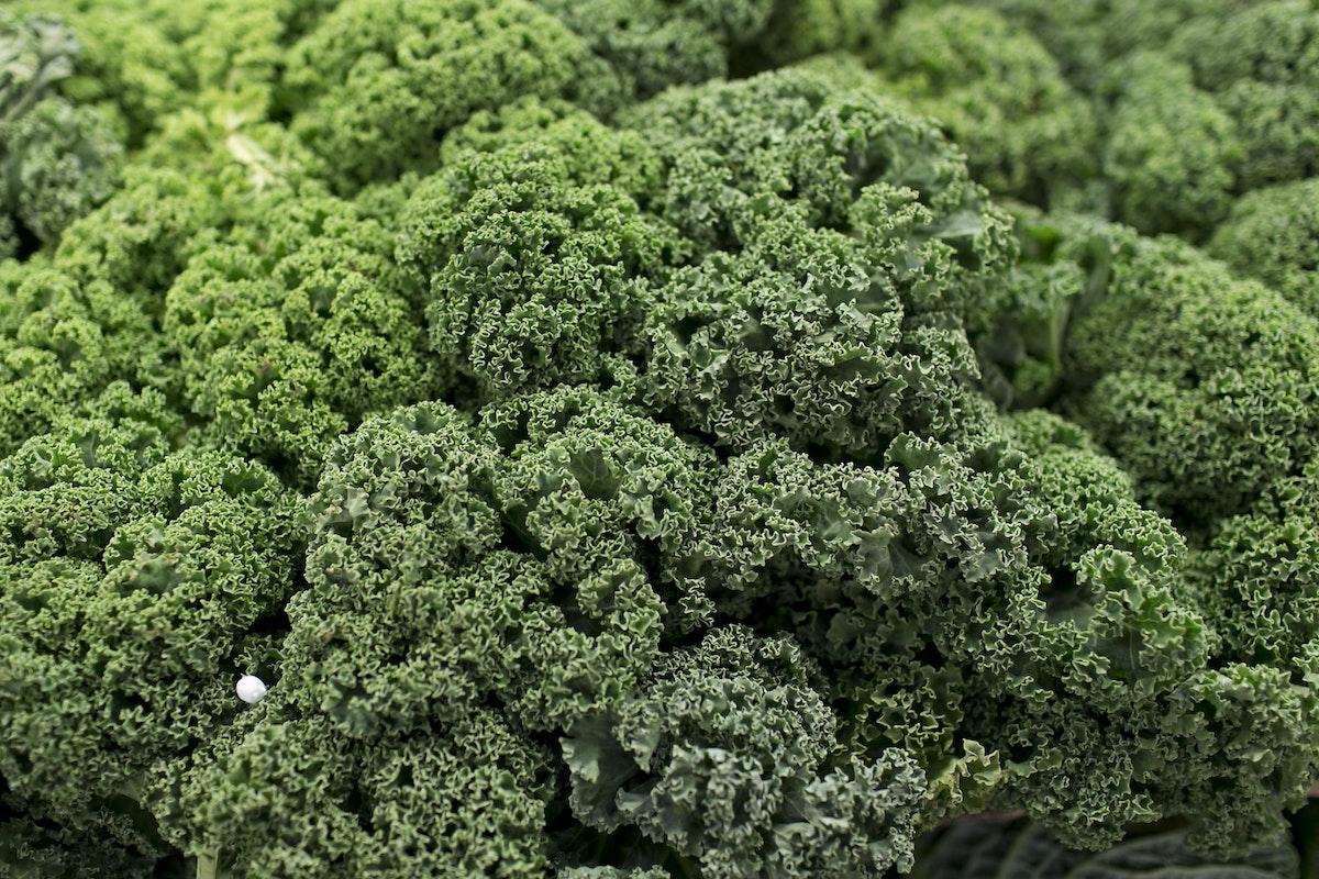 Fruit And Vegetable Market Report December 2014 Green Kale