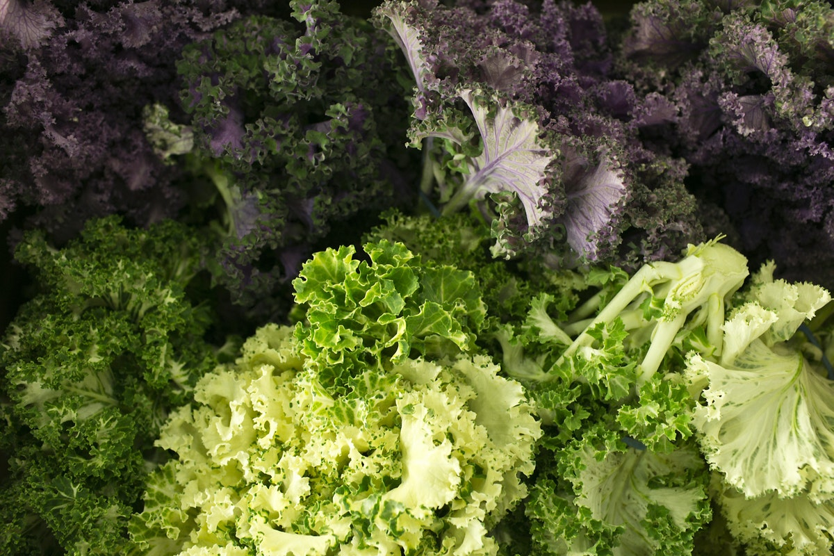 Fruit And Vegetable Market Report December 2014 Kale