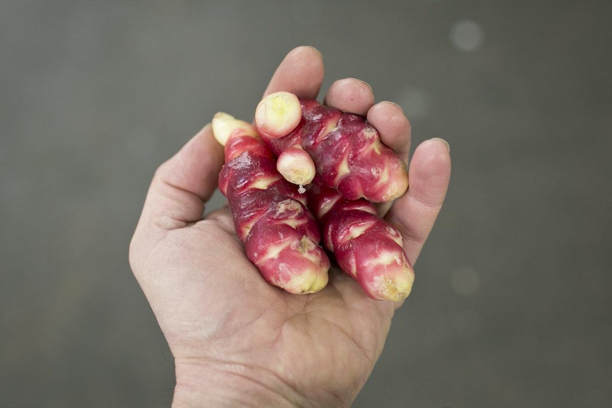 Fruit And Vegetable Market Report December 2014 Oca