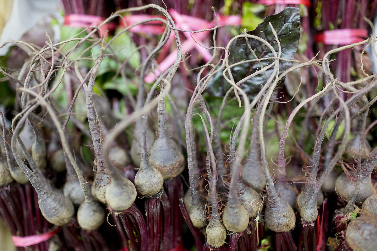 Fruit And Vegetable Market Report December 2016 Baby Beetroots
