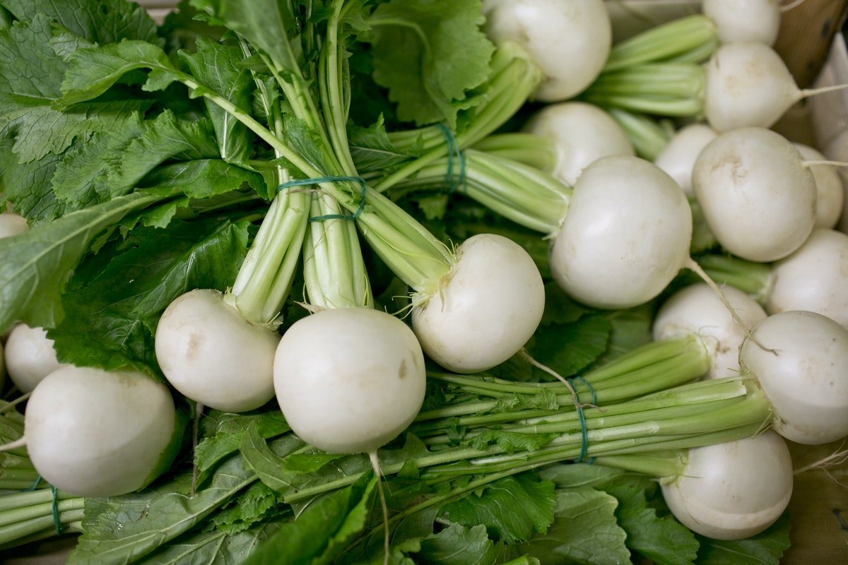 Fruit And Vegetable Market Report February 2015 Turnip