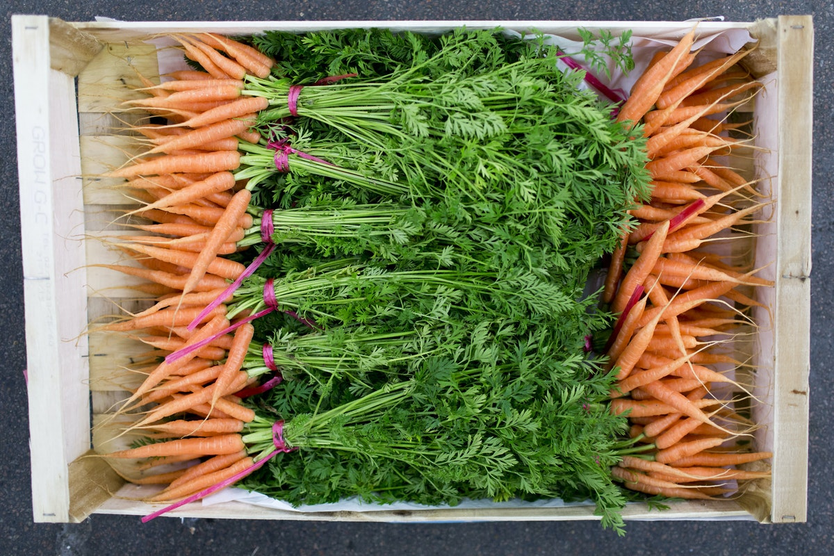 Fruit And Vegetable Market Report February 2016 Carrots
