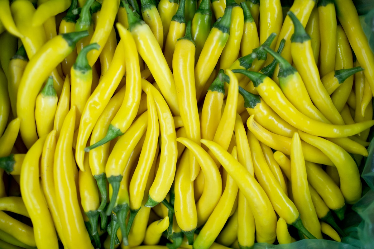Fruit And Vegetable Market Report February 2016 Chillies