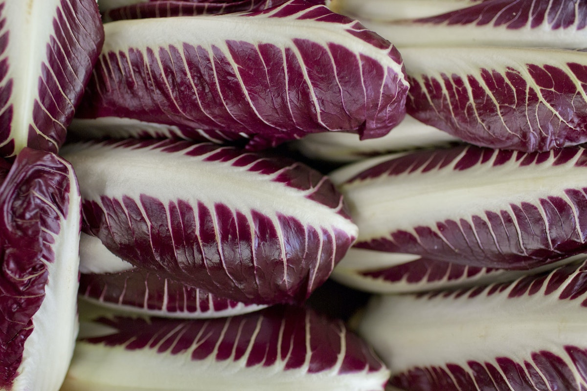 Fruit And Vegetable Market Report February 2016 Radicchio