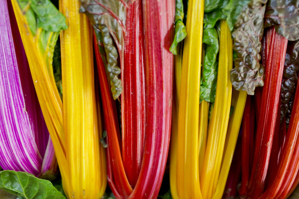 Fruit And Vegetable Market Report February 2016 Rainbow Chard