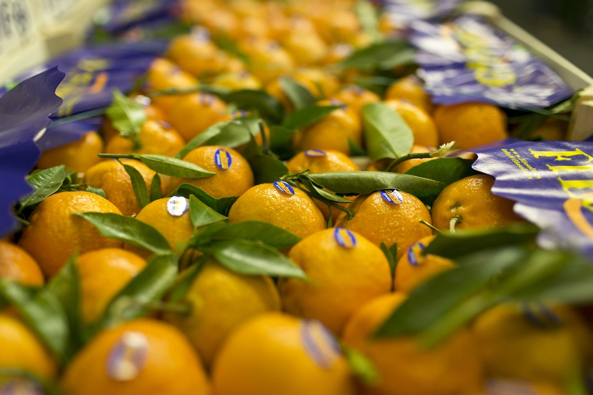Fruit And Vegetable Market Report January 2015 Clementines