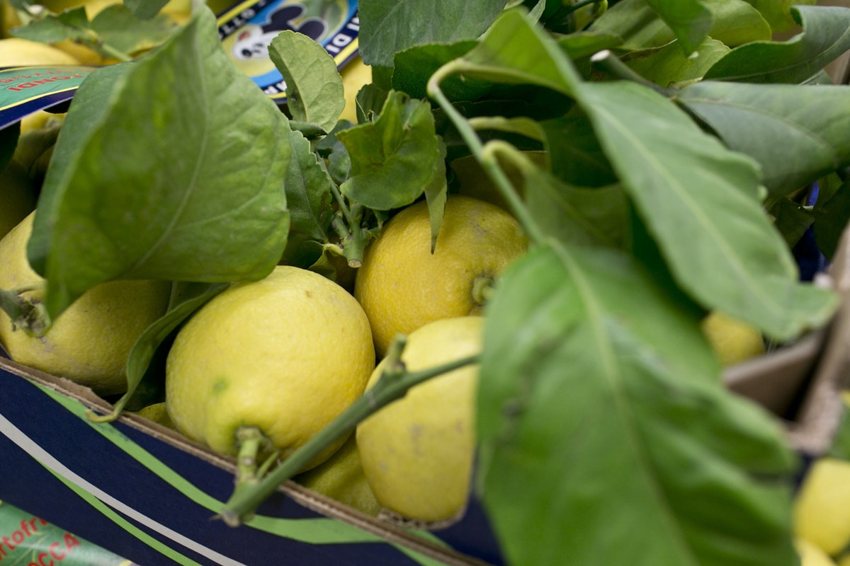 Fruit And Vegetable Market Report January 2015 Lemons