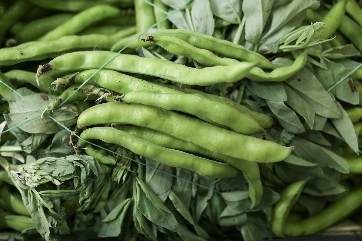 Fruit And Vegetable Market Report January 2017 Broad Beans