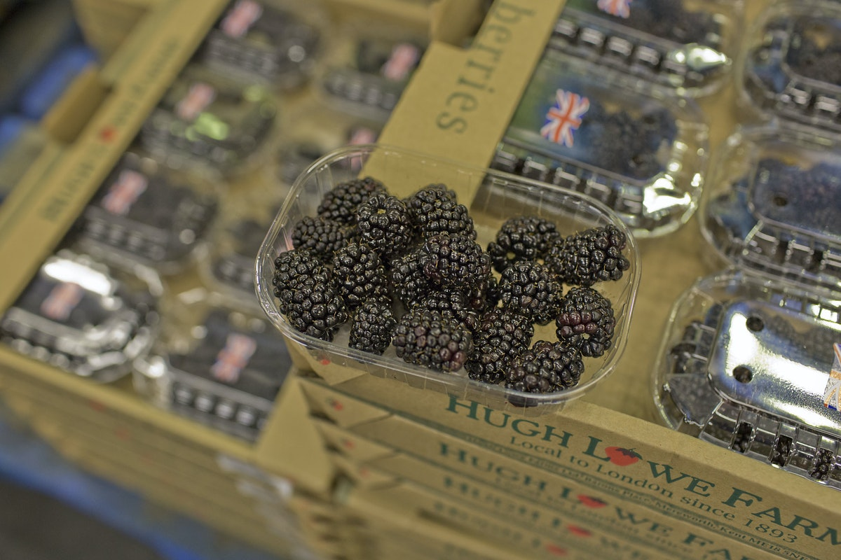 Fruit And Vegetable Market Report July 2014 Blackberry