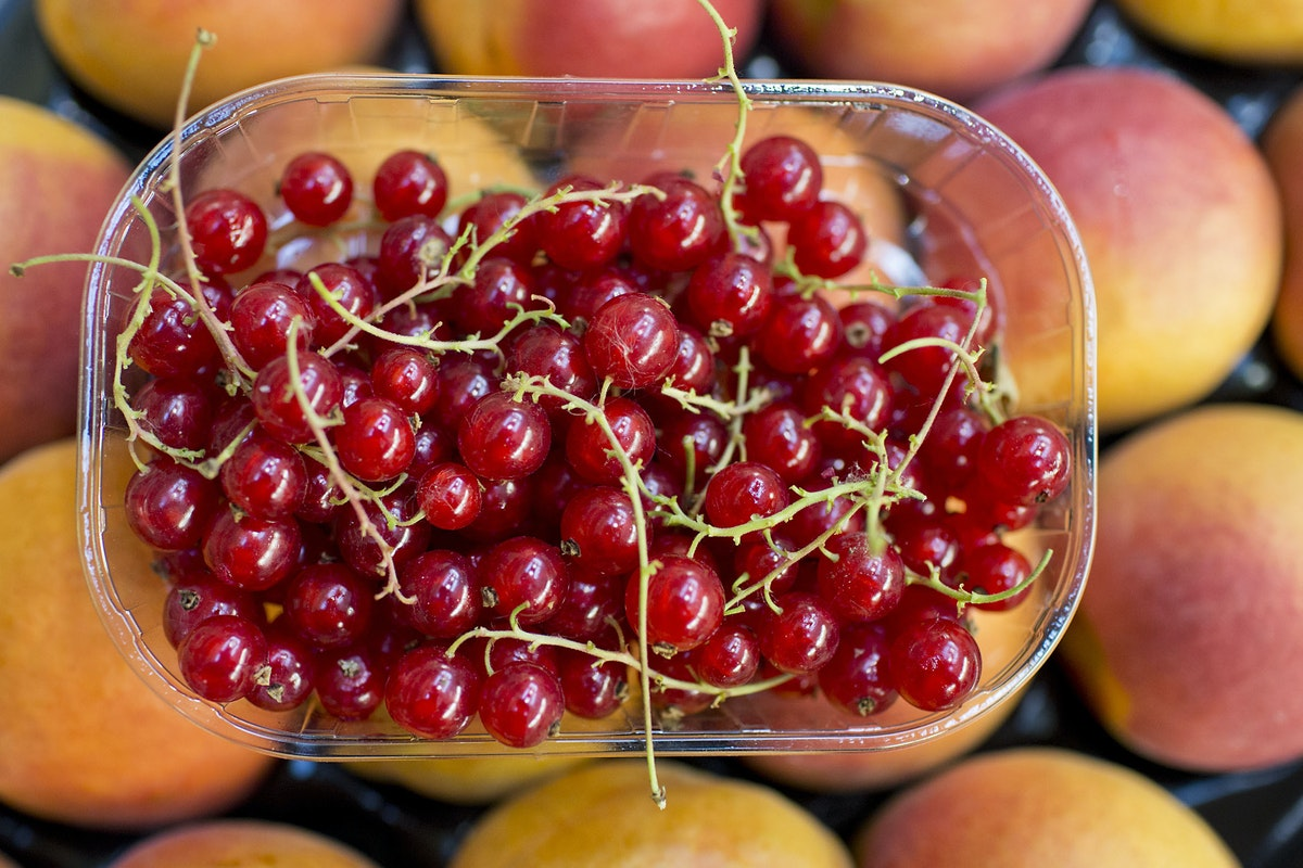Fruit And Vegetable Market Report July 2014 Redcurrants