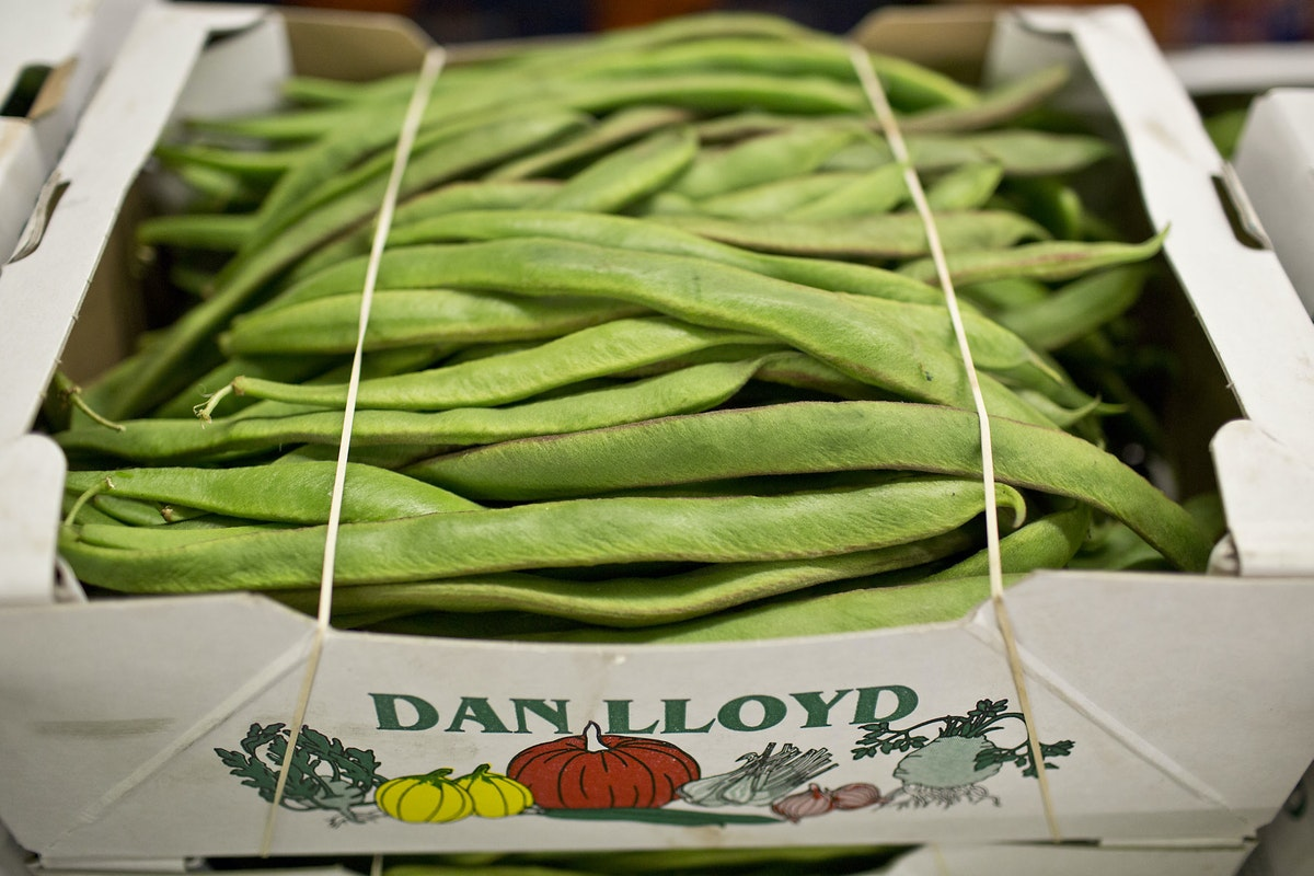 Fruit And Vegetable Market Report July 2014 Runner Beans
