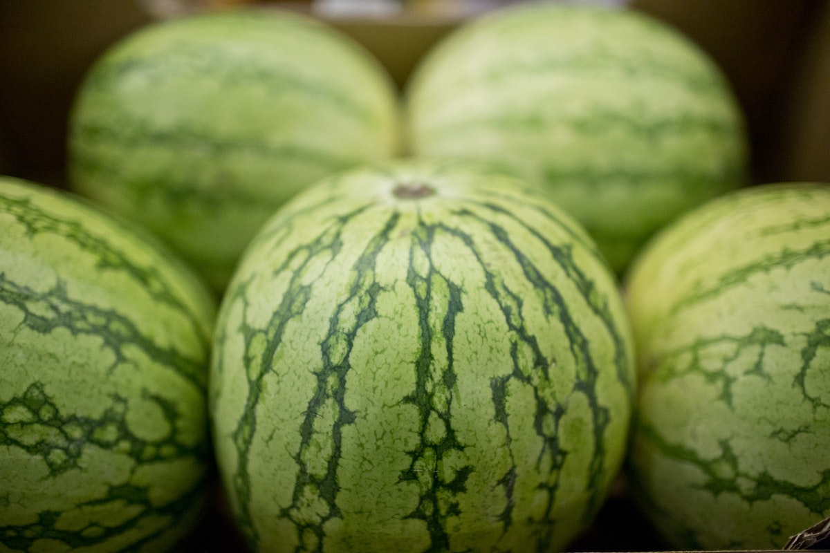 Fruit And Vegetable Market Report July 2014 Watermelon