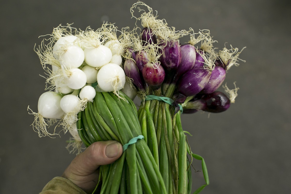 Fruit And Vegetable Market Report July 2015 Onions
