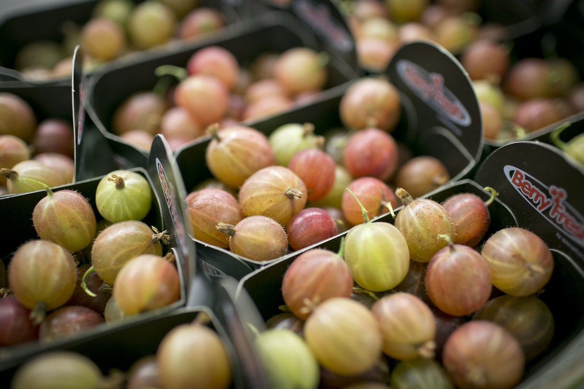 Fruit And Vegetable Market Report July 2015 Red Gooseberries