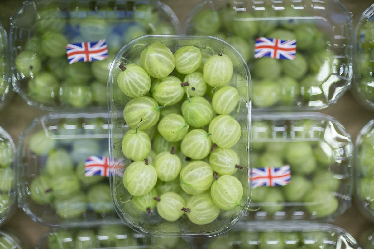 Fruit And Vegetable Market Report July 2016 Gooseberries