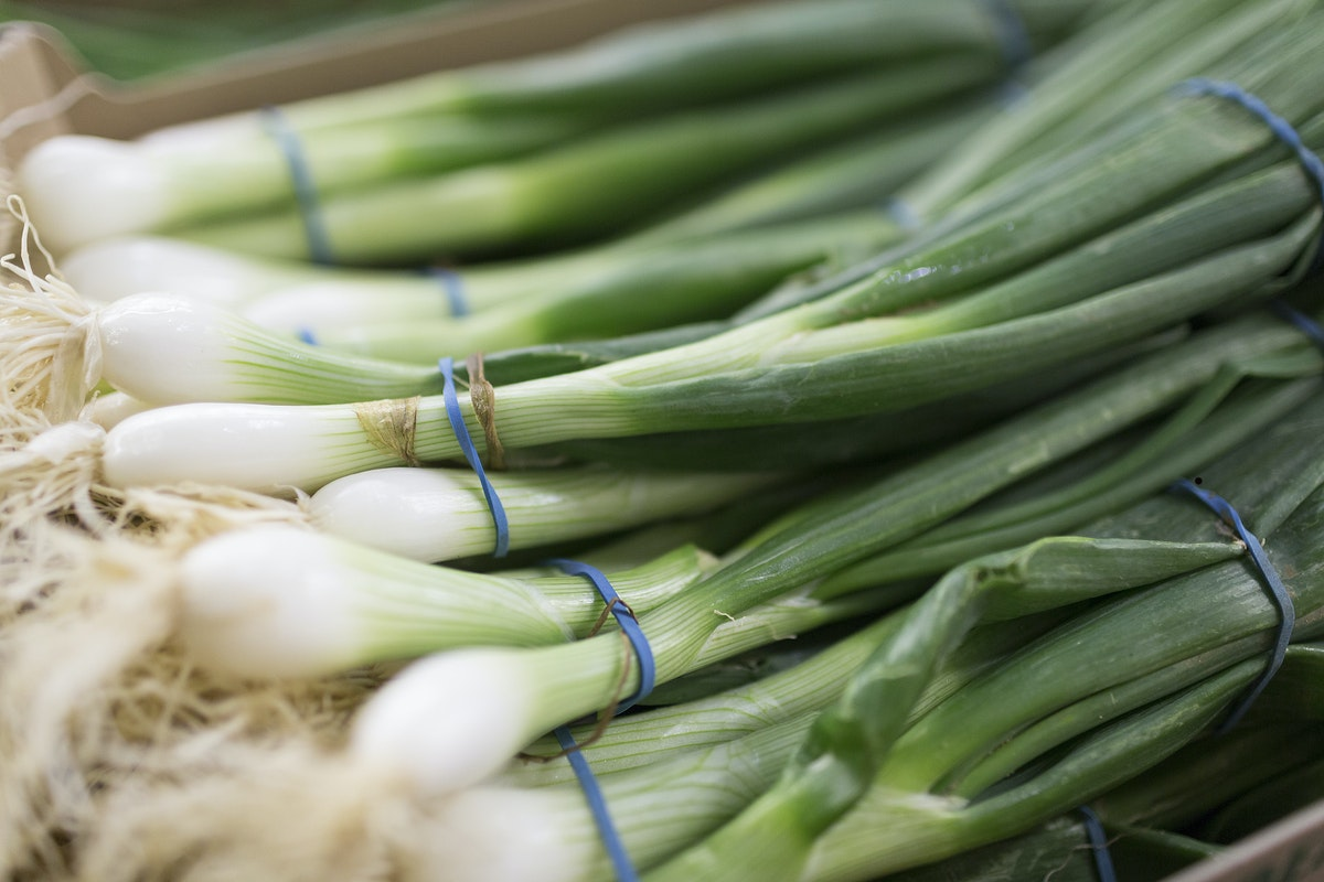 Fruit And Vegetable Market Report July 2016 Spring Onions