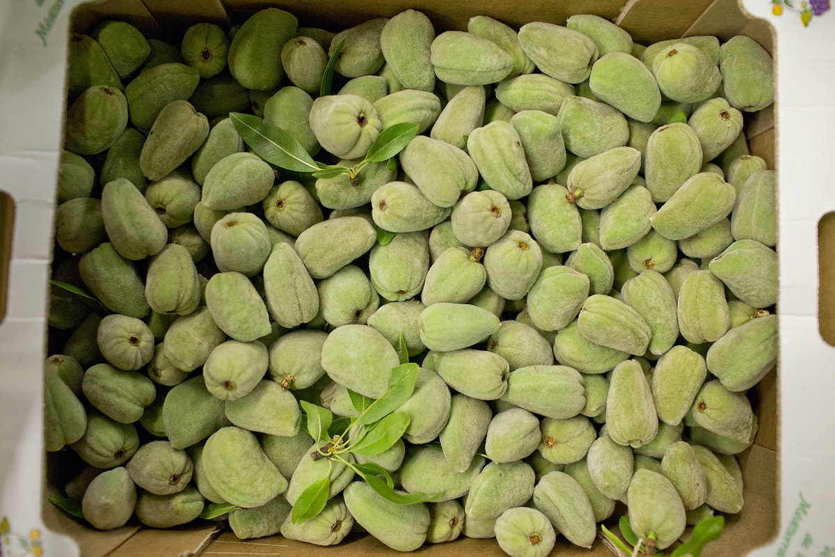 Fruit And Vegetable Market Report June 2014 Fresh Almonds