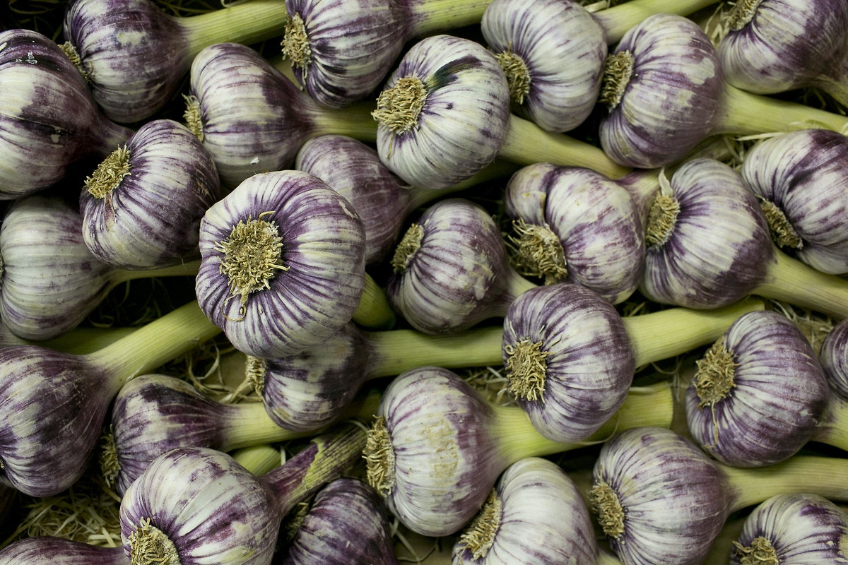 Fruit And Vegetable Market Report June 2015 Purple Garlic