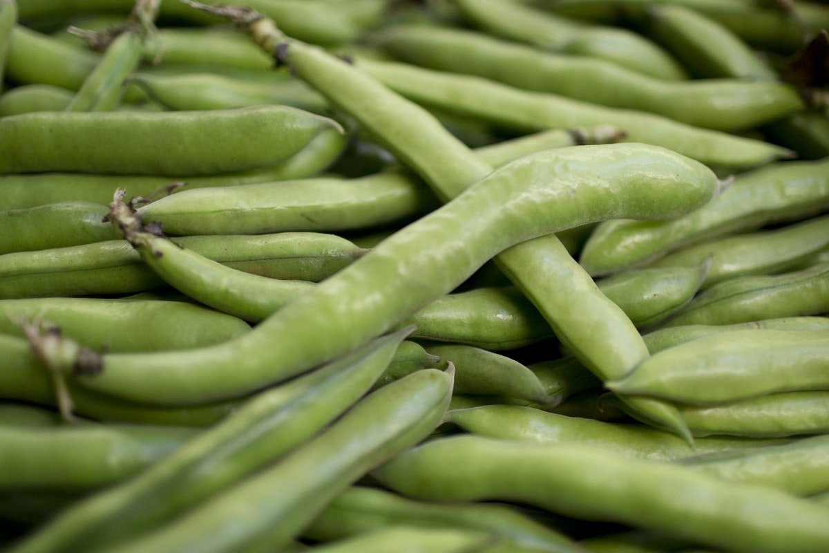 Fruit And Vegetable Market Report June 2016 Broad Beans