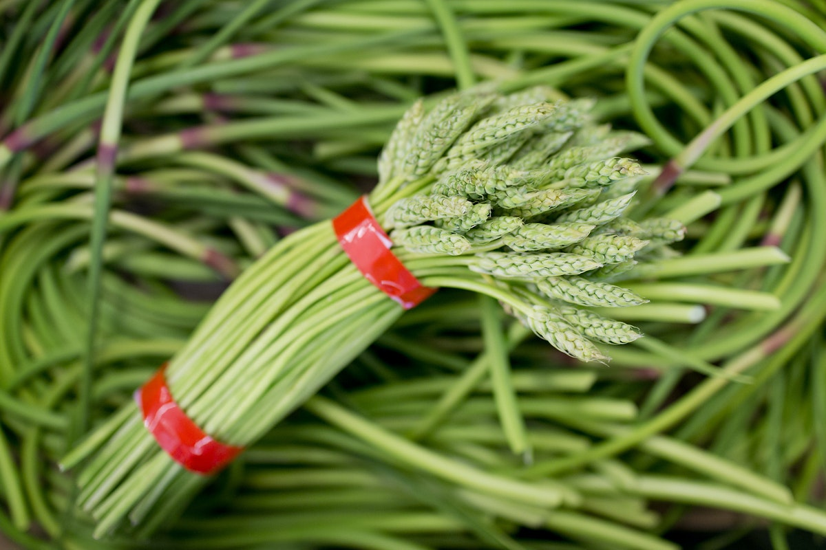 Fruit And Vegetable Market Report June 2016 Wild Asparagus Garlic Scapes