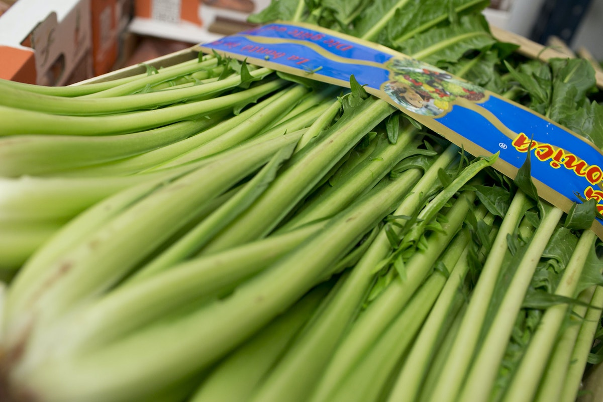 Fruit And Vegetable Market Report March 2015 Puntarelle