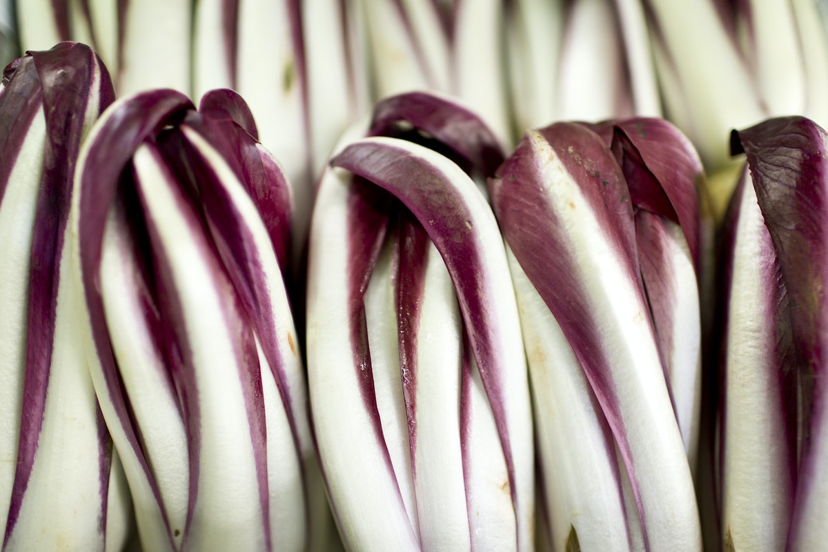 Fruit And Vegetable Market Report May 2015 Radicchio